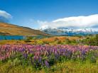 destaque patagonia